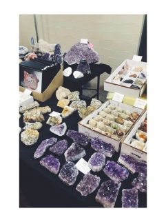 Central Florida Mineral & Gem Society Show